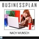 Businessplan nach Wunsch